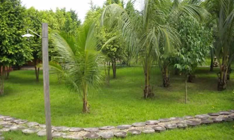 Amplios jardines de exuberante vegetación